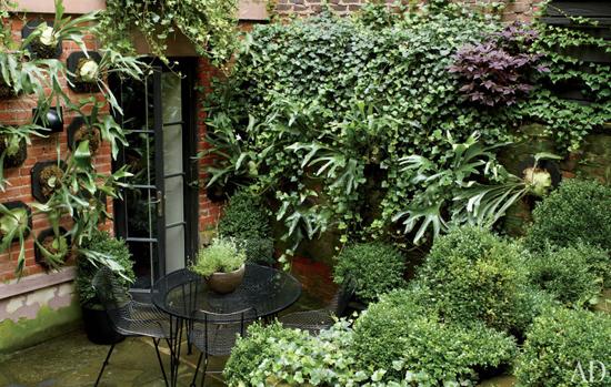 Джулианна Мур показала сад в Нью-Йорке